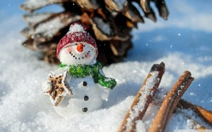 christmas_snowman_crafts-wallpaper-1680x1050