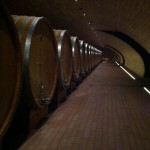 Cantina Antinori, wine barrelsCantina Antinori, botti